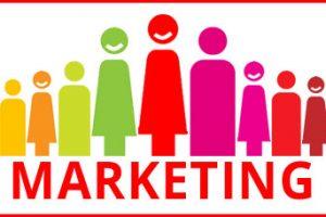 Chargé(e) de campagnes CRM – PICARD